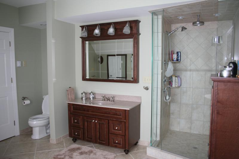 Glamour bathroom created by Nest Homes Construction in Bratenahl Ohio.